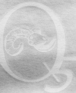 Q5 Outdoor Products Decal
