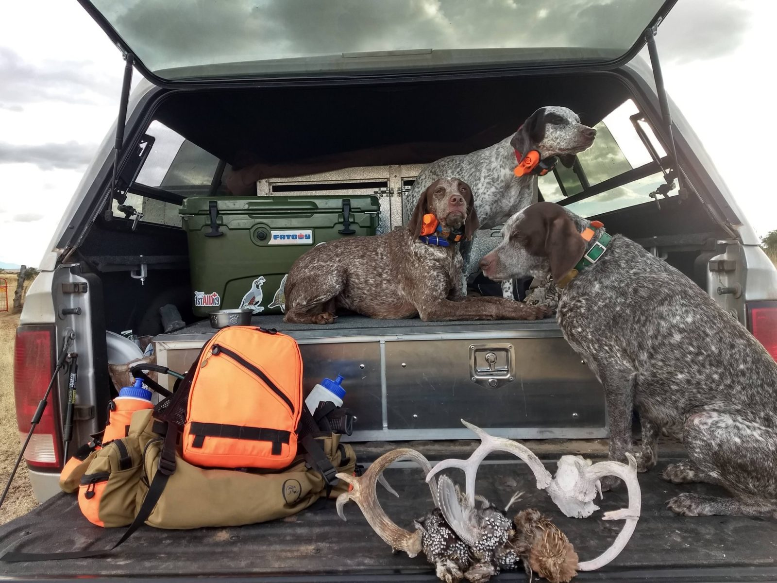 Sense of Place: Gun Dogs and GPS